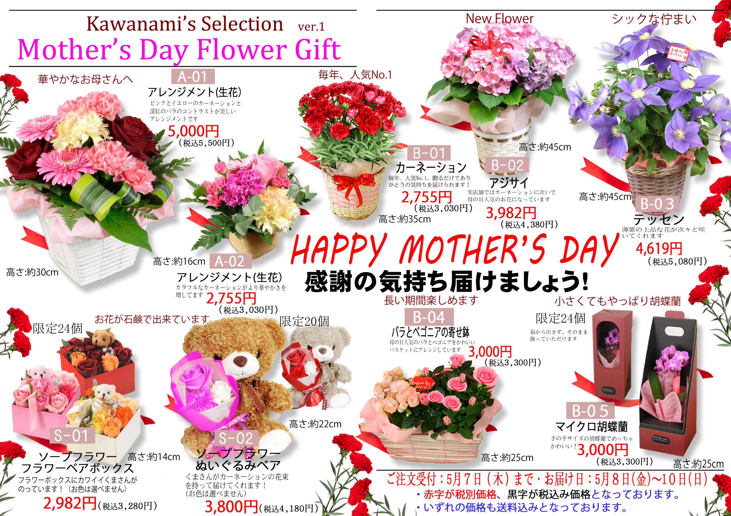 #花で帰省しよう1母の日