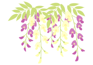デビッドリンチ藤の花